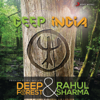 Deep India - Deep Forest & Rahul Sharma