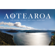 Stan Walker Aotearoa (Maori Language Week 2014) [feat. Ria Hall, Troy Kingi & Maisey Rika] - Stan Walker
