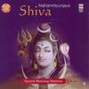 Mahamrityunjaya Shiva - Sacred Morning Mantras