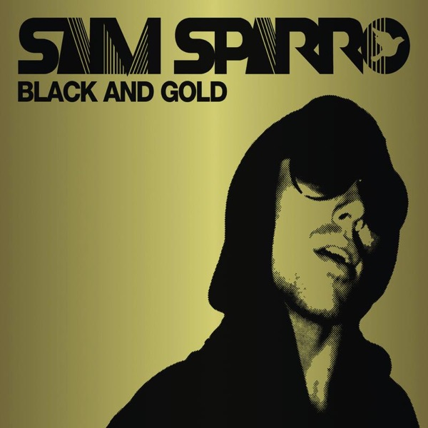 Cover art for Black And Gold