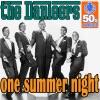 The Danleers - One Summer Night