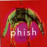 Phish - Julius