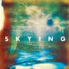 Buy Skying by The Horrors on iTunes (另類音樂)