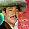 Boleros Rancheros Con..., Javier Solís