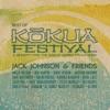 Jack Johnson & Friends - Best of Kokua Festival ジャケット写真