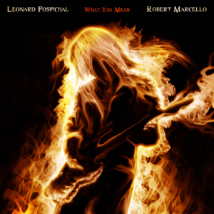 Leonard Pospichal & Robert Marcello - What You Mean