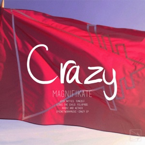 Magnifikate & Louis The Child - Crazy (Louis the Child Remix) [feat. Jess Nitties]
