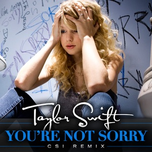 You're Not Sorry (CSI Remix) - Single Mp3 Download