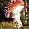 Fungus Amongus, Incubus