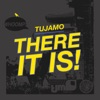 There It Is (Remixes) - EP, Tujamo