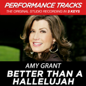 Better Than A Hallelujah (Performance Tracks)  EP-Amy Grant