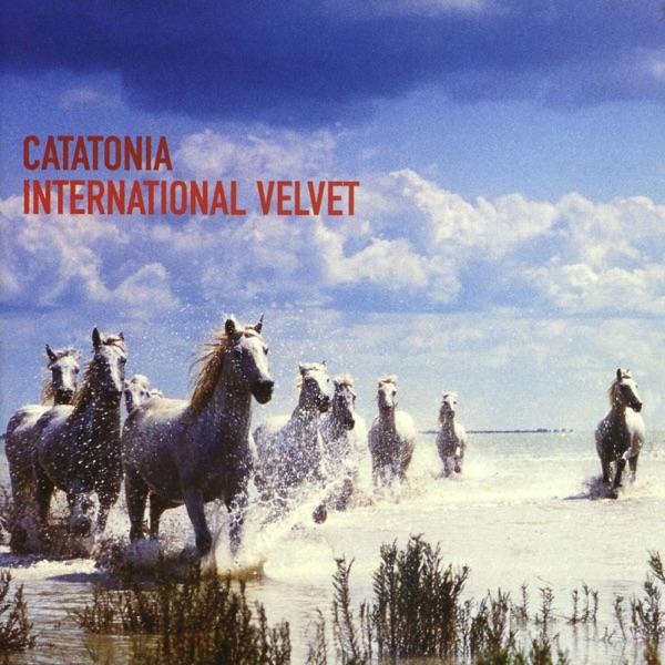 Cover art for International Velvet