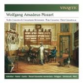Frans Brüggen, Frans Vester, Mozart Ensemble Amsterdam - Flute Concerto in G Major, K. 313/285c: I. Allegro maestoso