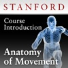 Anatomy of Movement - Course Introduction