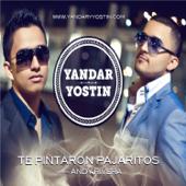 Te Pintaron Pajaritos - Yandar & Yostin
