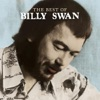 Icon The Best of Billy Swan