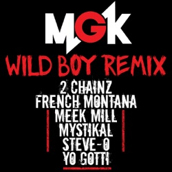 View album Wild Boy (Remix) [feat. 2 Chainz, French Montana, Meek Mill, Mystikal, Steve-O & Yo Gotti] - Single