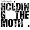 Holding the Moth Remixes ジャケット写真