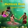 Mehboob Mere Vol 1 Sunheri Yaadein