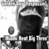 Miami Heat Big Three Single