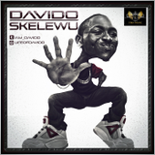 [Download] Skelewu MP3