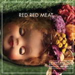 Red Red Meat - Chain Chain Chain (4-Track Demo)