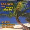 Edo Puma Canta Havana Mambo