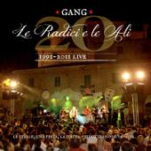 Le radici e le ali (Venti di Gang 1991-2011 Live, Le stelle, una festa, la piazza 16 / 09 / 2011)
