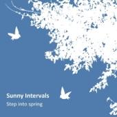 Sunny Intervals - Until the Summer