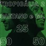 Caetano Veloso & Gilberto Gil - Desde Que o Samba e Samba