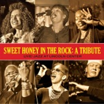 Sweet Honey In the Rock - Intro to Freedom Suite (Spoken) [a.k.a. Intro to Civil Rights Medley]