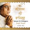 Satnam Sri Wahe Guru - Various Artists