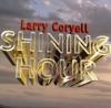 My Shining Hour (LP Version)  - Larry Coryell