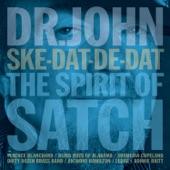 Dr. John - I've Got the World on a String (feat. Bonnie Raitt)