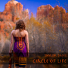 "Circle of Life (from ""the Lion King"") - Taylor Davis"
