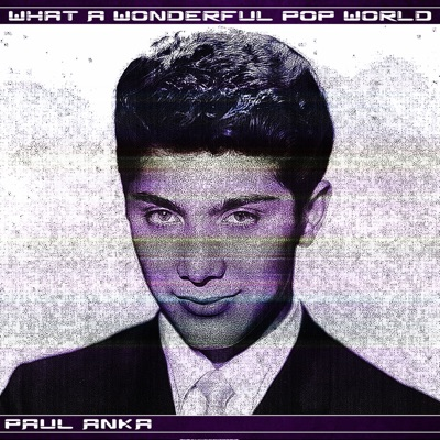 What a Wonderful Pop World - Paul Anka