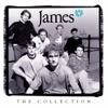 The Collection, James