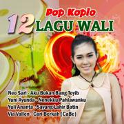 Pop Koplo 12 Lagu Wali - Various Artists - Various Artists
