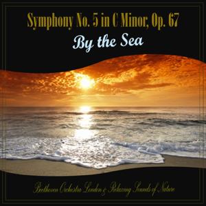 Beethoven London & Relaxing Sounds of Nature - Symphony No. 5 in C Minor, Op. 67 - III. Allegro With Calming Ocean Waves