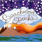 Beachwood Sparks - Sleeping Butterfly