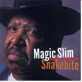 Magic Slim & The Teardrops - Please Don't Dog Me
