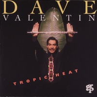 Dave Valentin - Live At The Blue Note