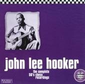 John Lee Hooker - Mad Man Blues