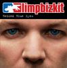 Limp Bizkit - Behind Blue Eyes bild