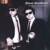 Briefcase Full Of Blues-The Blues Brothers