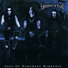 Immortal - Sons of Nothern Darkness artwork