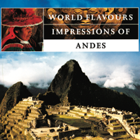 Impressions of the Andes