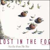 Lost In The Fog - Favorite Son