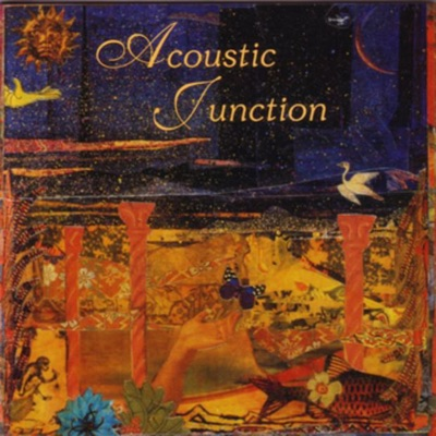Surrounded By Change - Acoustic Junction