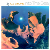 Into the Sea (Original Edit)